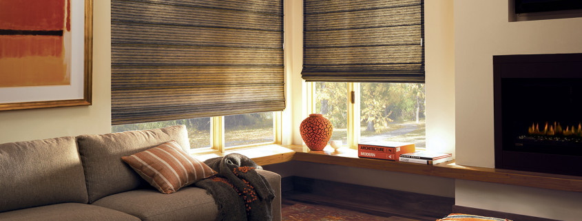 Roman shades orlando motorized shades Motorized window shades cost